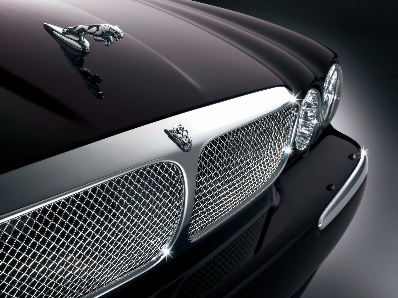 New Amazing Jaguar Logo Cars Wallpaper Picture Image Free On This Month