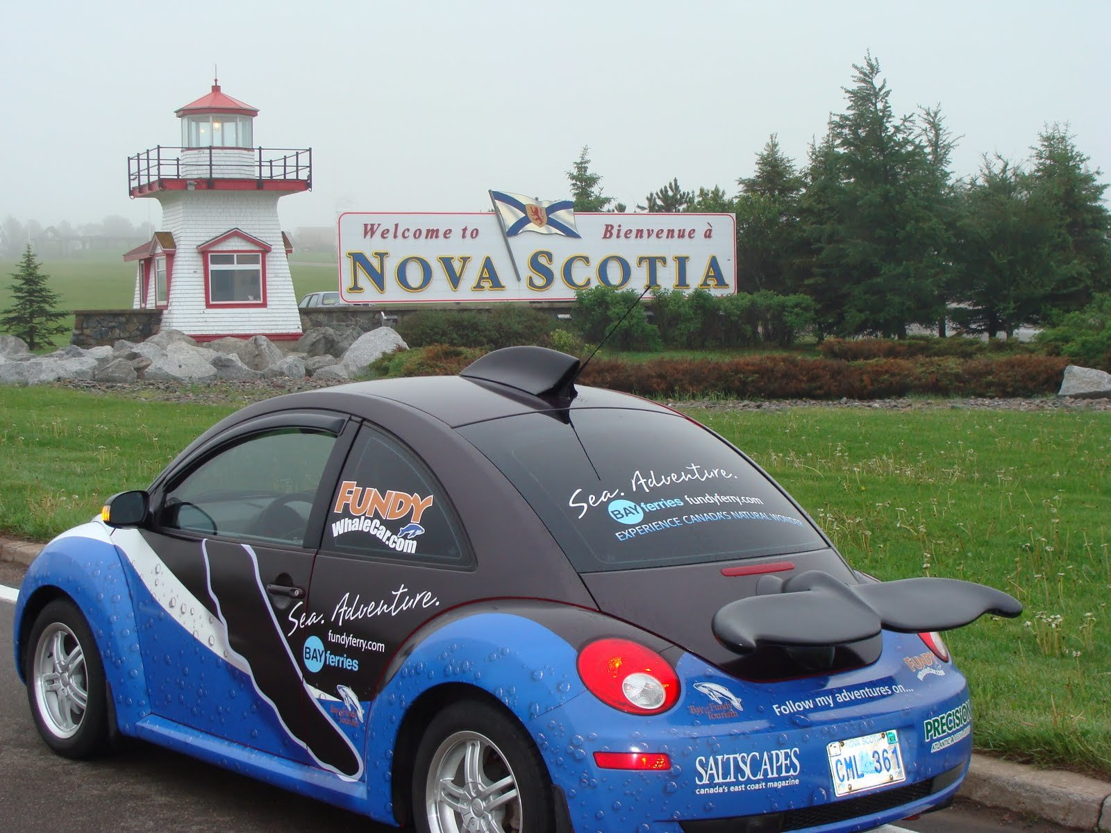 New Bay Of Fundy Blog Whale Car Revealed On This Month