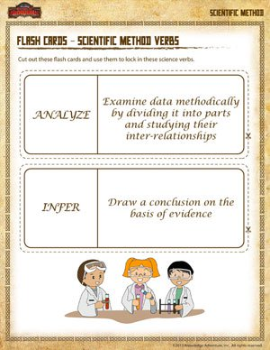 Flash Cards – Scientific Method Verbs –Scientific Method Worksheet ...