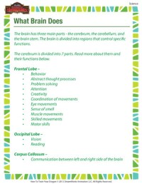 What Brain Does  Printable 5th Grade Science Worksheet