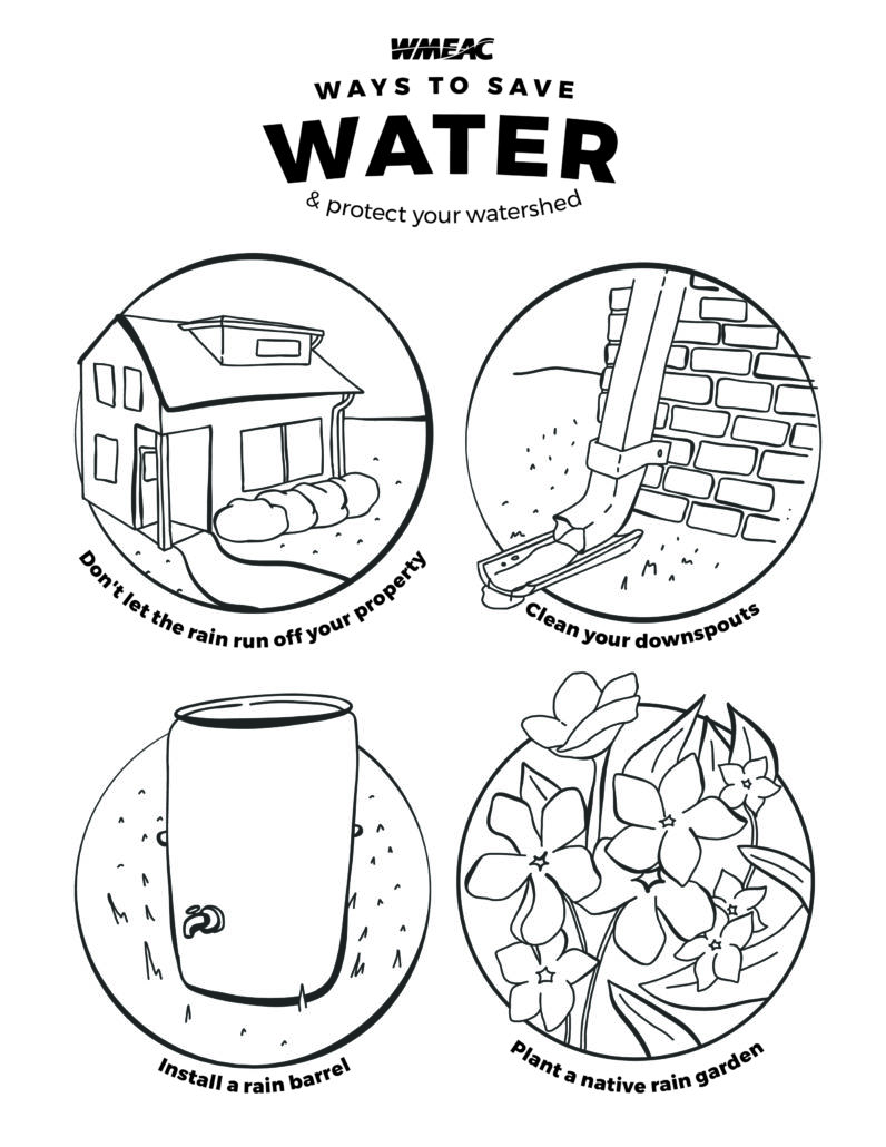 Teach for the Watershed