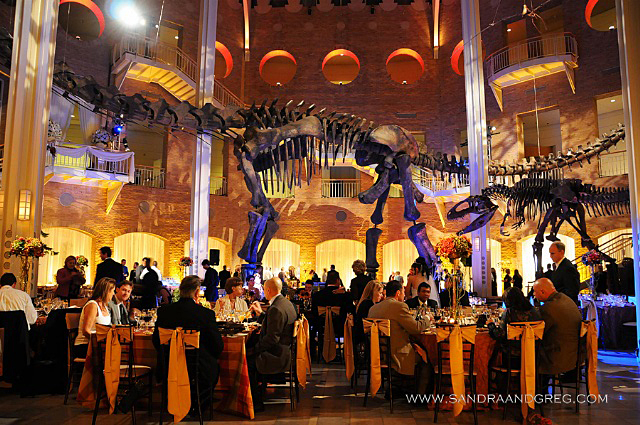 Tuscan Autumn Themed Wedding Fernbank Museum Atlanta GA  WM EventsWM Events