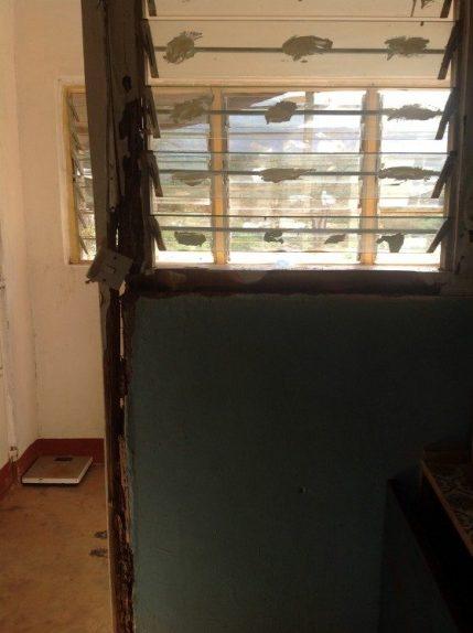 termite-door-2
