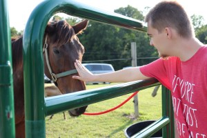 Young man in a red shirt petting a horse