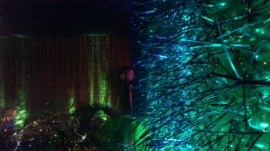 ambiente da floresta, feito com garrafas PET, braçadeiras plásticas e fibra ótica