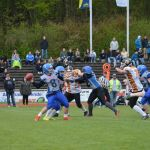 Football in St. Wendel: Wolves empfangen am Samstag WildBoys