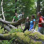 Nationalpark-Veranstaltungen im Juli