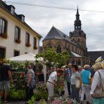 Thymian und Kirchenmesse – Klosterfest und Kräutermarkt in Tholey