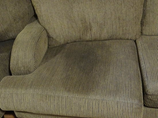How To Remove Pee And Urine From Couch Works For Mattresses Too!