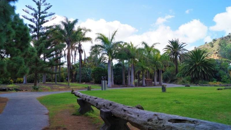 Eine vielfältige Pflanzenwelt - tropisches Flair auf Gran Canaria