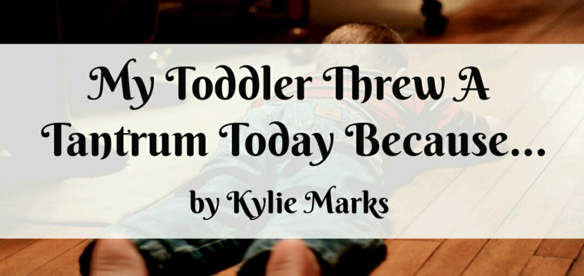 My Toddler Threw A Tantrum Today Because…