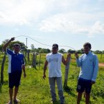 Kabel der ANDE bringt drei Menschen den Tod