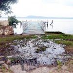 Essap verseucht Ypacaraí See