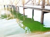 Der See ist nicht zum Baden geeignet