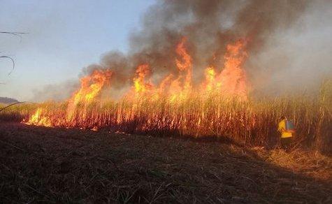 Was es bei Flächenbränden zu beachten gilt