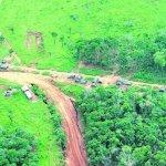 Beispielloses Bußgeld für Ausländer wegen Abholzung