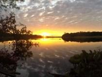 Pantanal: Bewerbungsprozess an die UNESCO eingeleitet