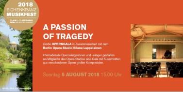 6-eichenkranz-musikfest-2018-operngala