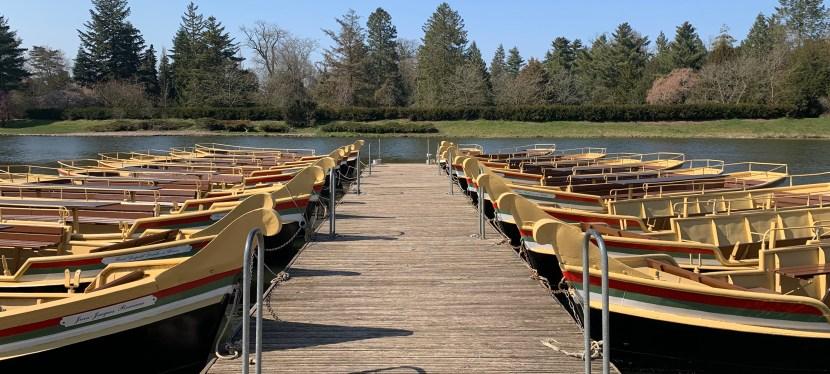 Fähren und Gondeln fahren wieder im Wörlitzer Park