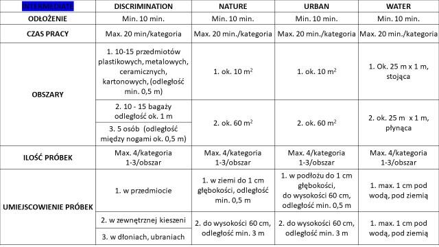 Testy ORT WoGa Nosework poziom intermediate