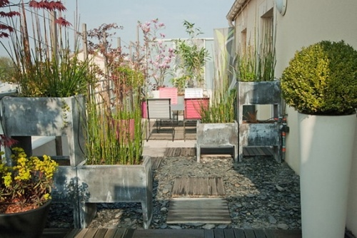 balkon sichtschutz balkon pflanzen sichtschutz balkon, Gartengerate ideen