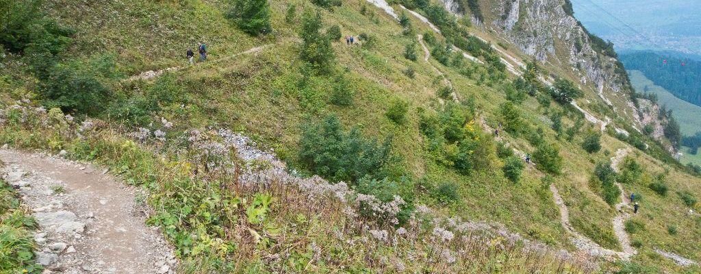 Trailscoutingreport Hochfelln (Chiemgauer Alpen)