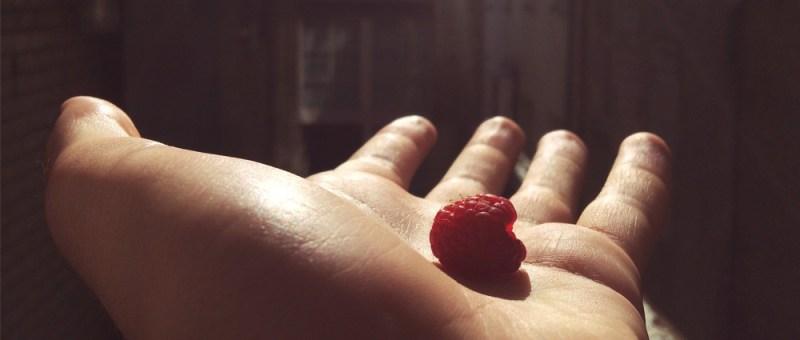 Foto Himbeere auf Handteller