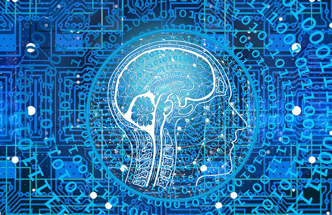 IBM utiliza Inteligencia Artificial para salvar playas australianas