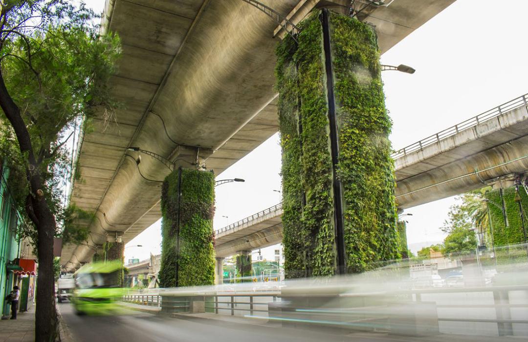 Proyecto Vía Verde: nuevos pulmones para la CDMX