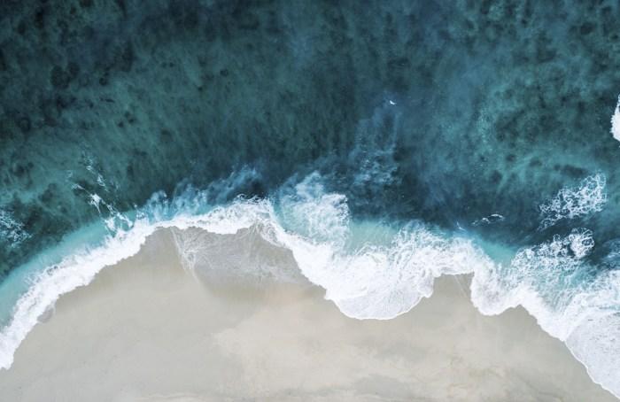 La enfermedad de los océanos, los pulmones de nuestro planeta