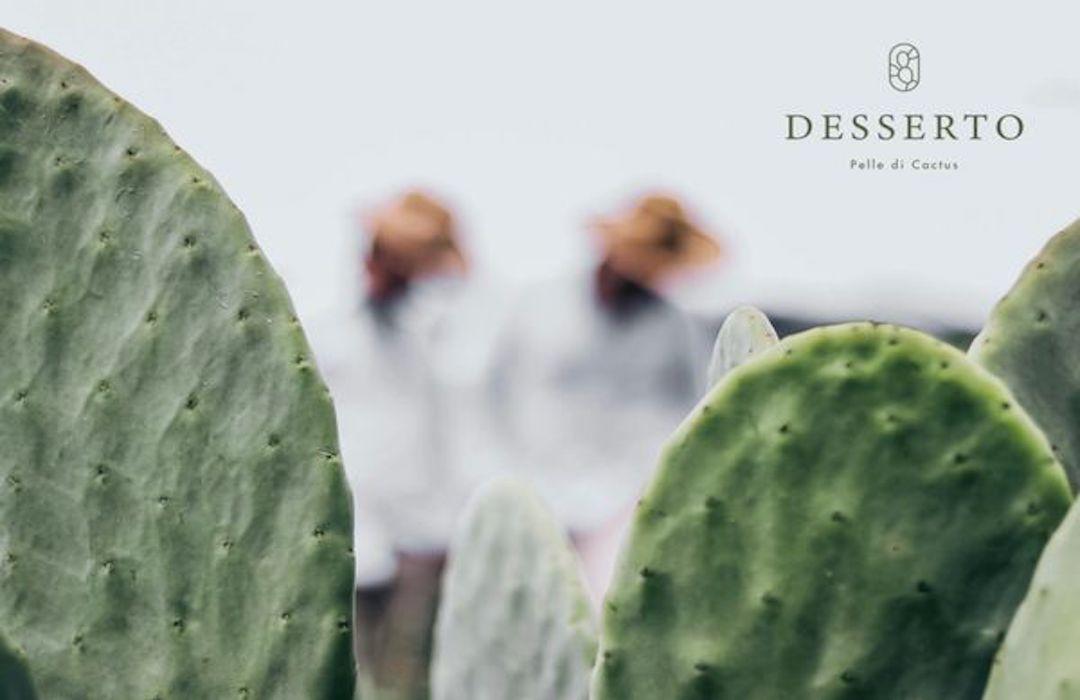 Empresa mexicana que produce cuero vegano de nopal gana segundo lugar LVMH Innovation Award