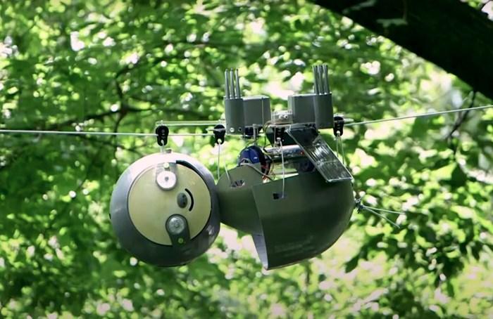 SlothBot: el robot perezoso que vigila a especies en peligro de extinción