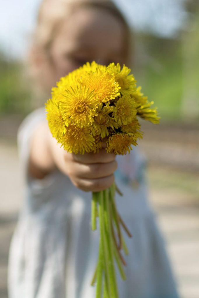 Estudio afirma que las flores nos hacen sentir mejor