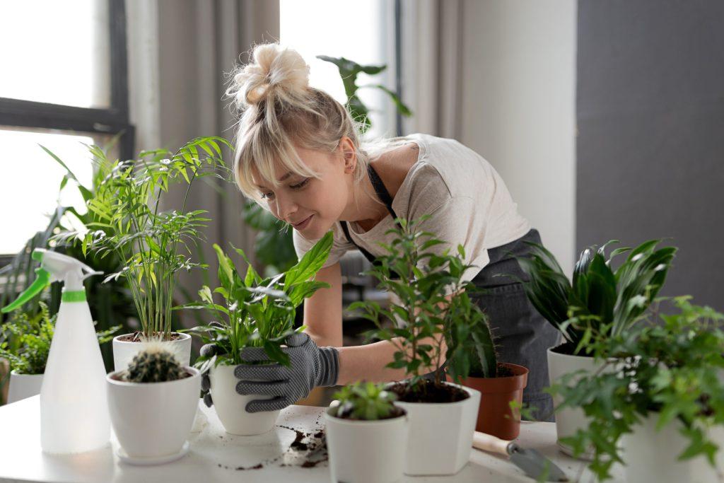Las plantas reducen los niveles de ansiedad y depresión: confirma estudio