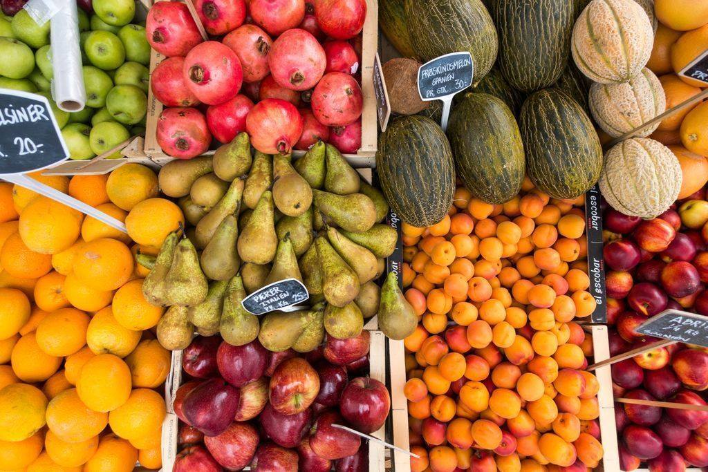 Qué puedes hacer para dejar de desperdiciar comida