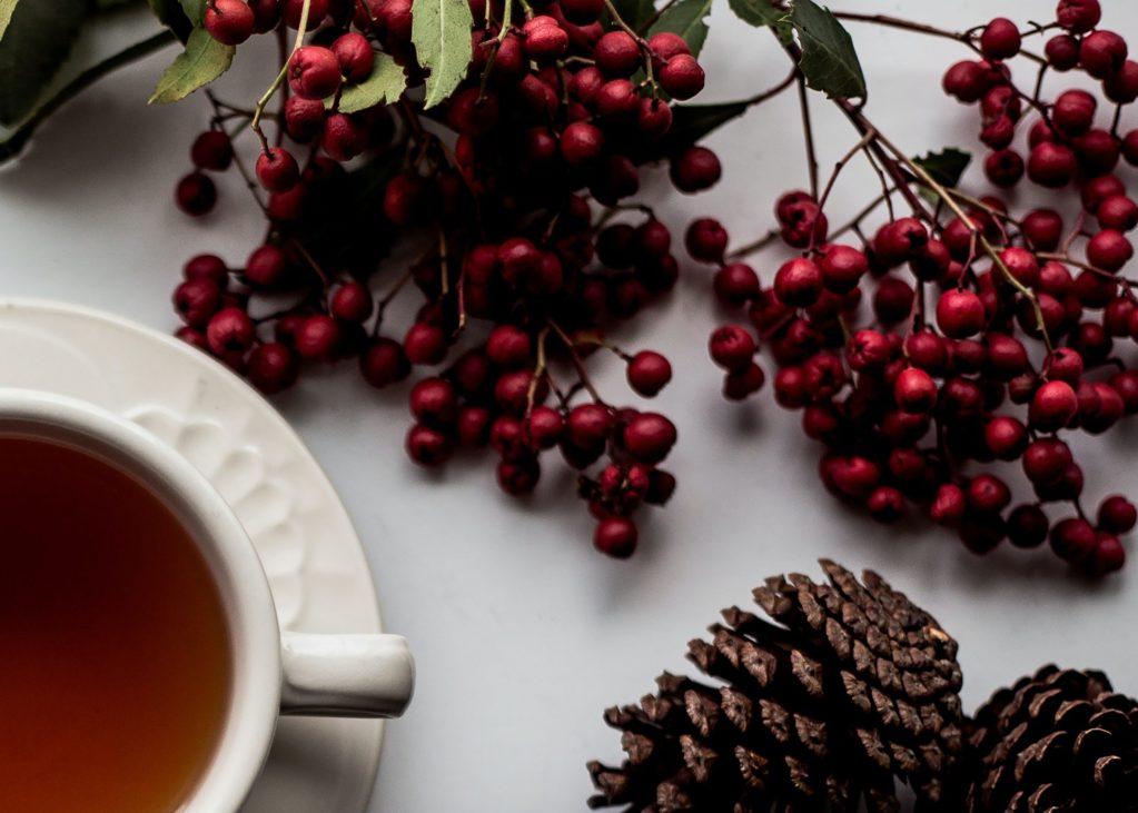 El té de pino mejora la salud y previene otras enfermedades