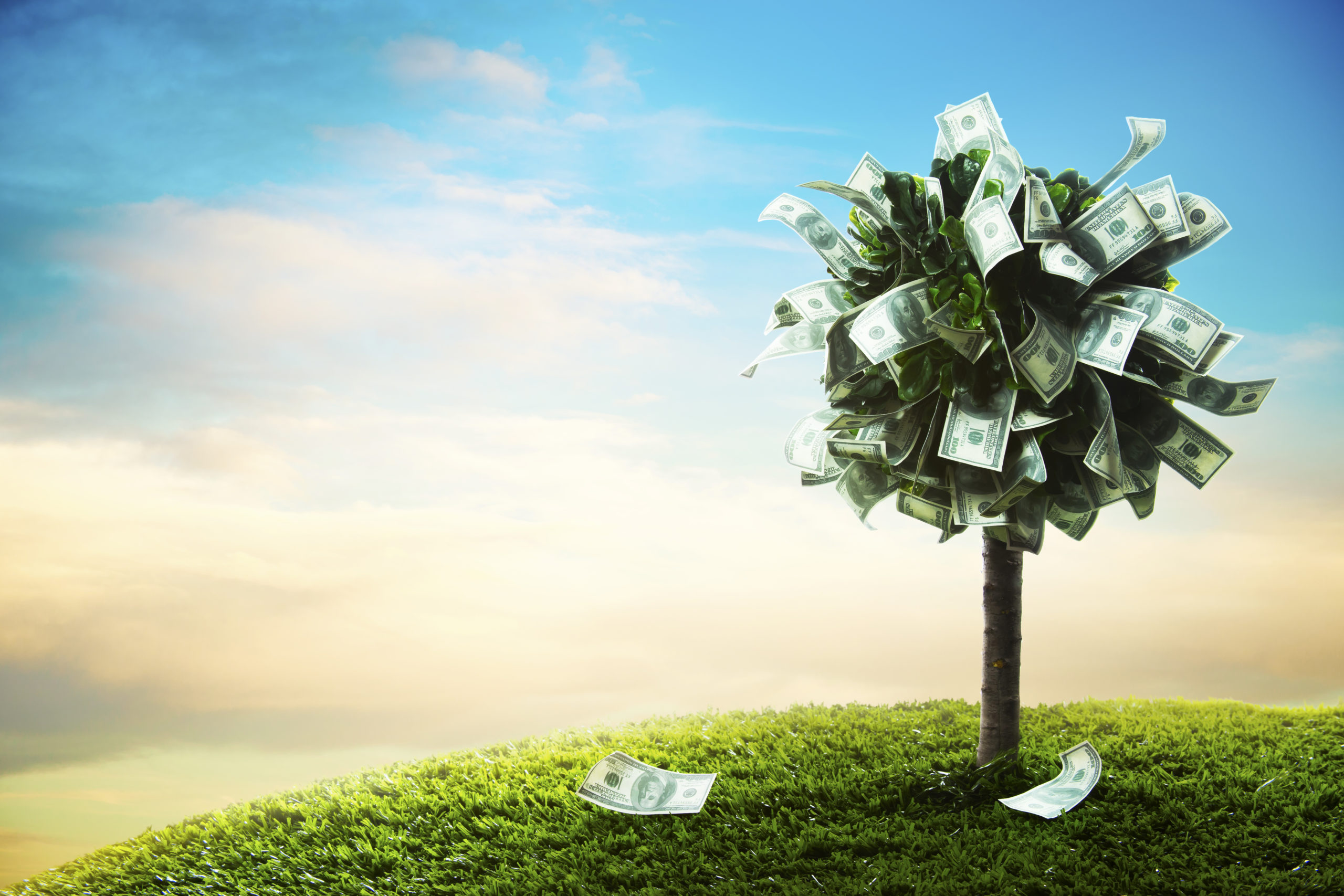 Un mes sin gastar nada, el reto que promete mejorar tus finanzas
