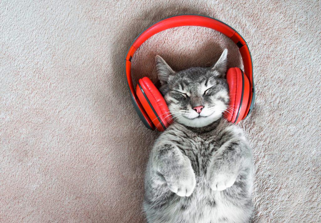 Este artista recopiló en un álbum los sonidos más felices del mundo
