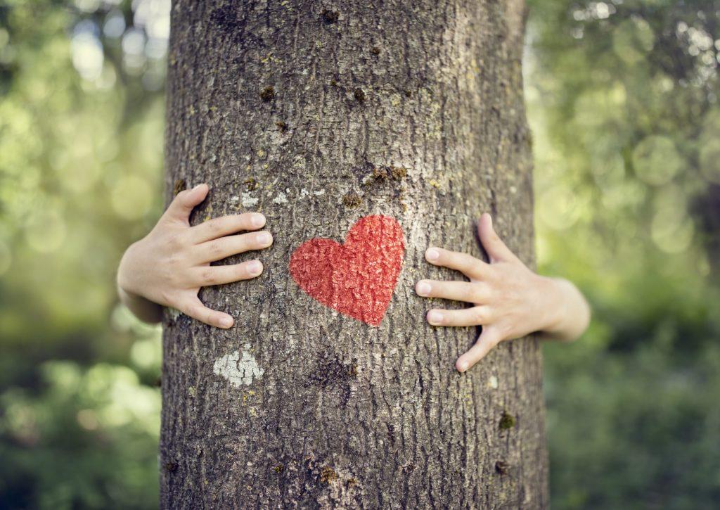 5 formas de decir Te Amo de manera sostenible