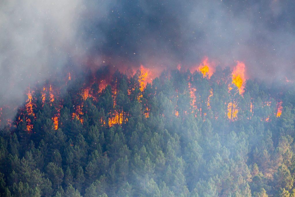 Marzo 2021: mes con registro histórico en incendios y tolvaneras en CDMX