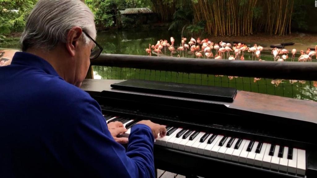 Pianista ofrece conciertos para relajar a los animales del zoológico