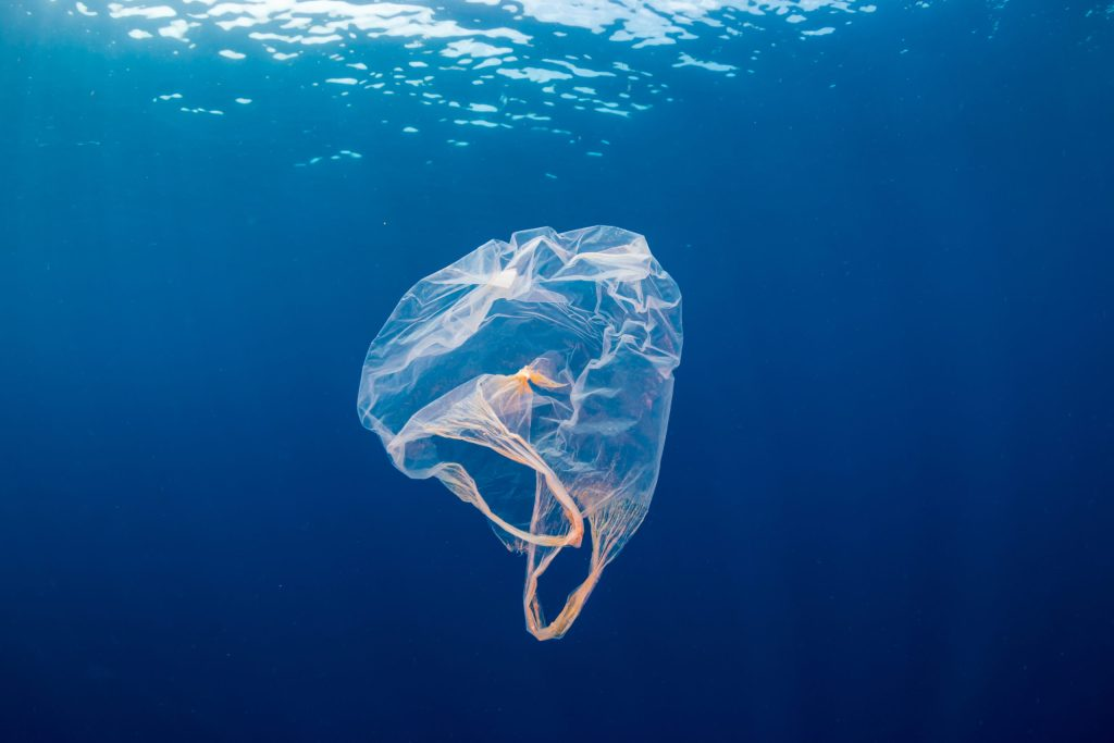 Bolsas de plástico que se disuelven en agua y ¡no contaminan!