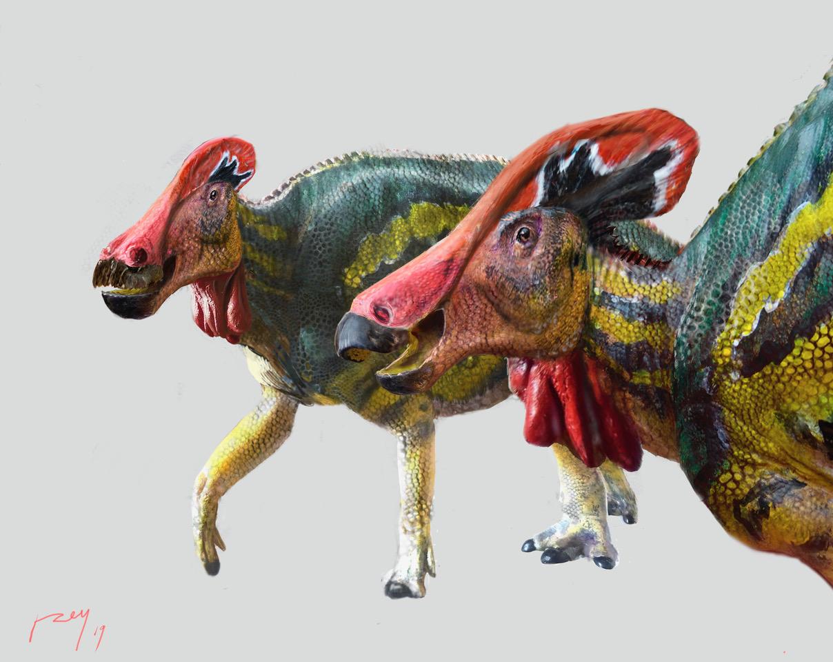 Encuentran una nueva especie de dinosaurio ¡en México!