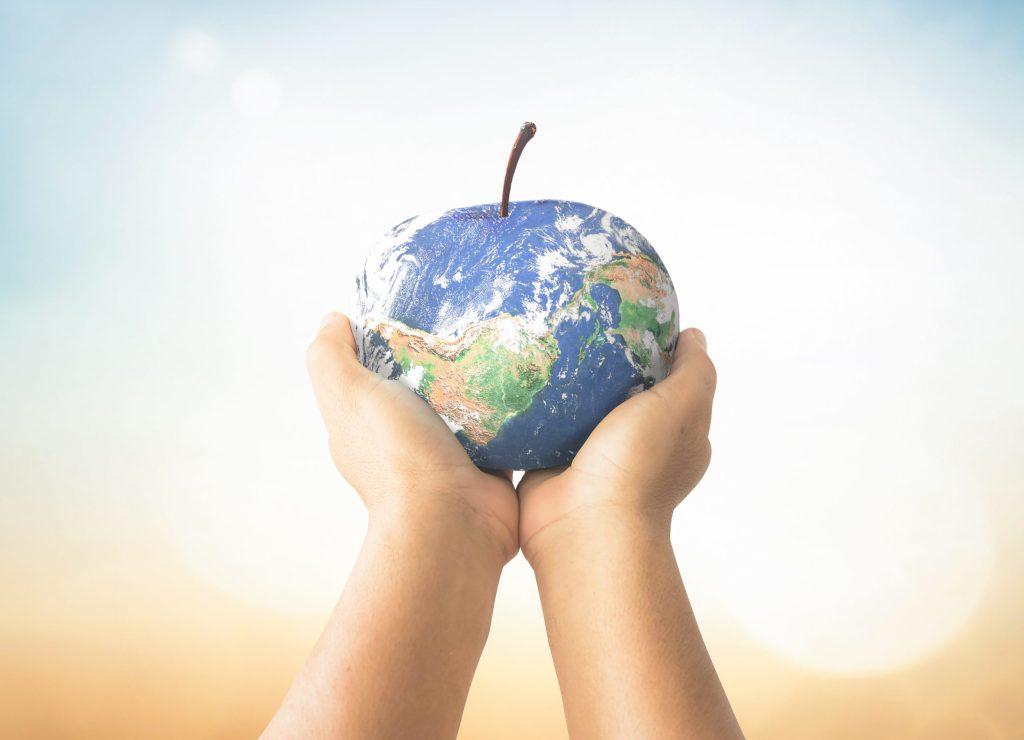 Atención, foodies: 4 formas de que la gastronomía sea más sostenible