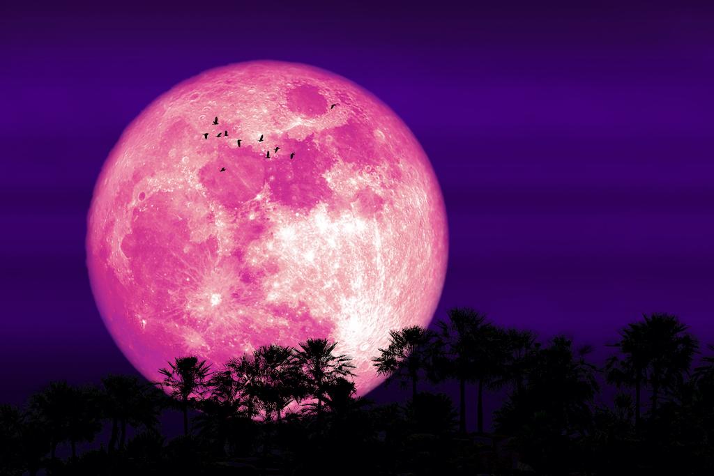 ¡Es hoy, es hoy! Luna de fresa: la última superluna que podremos ver este año