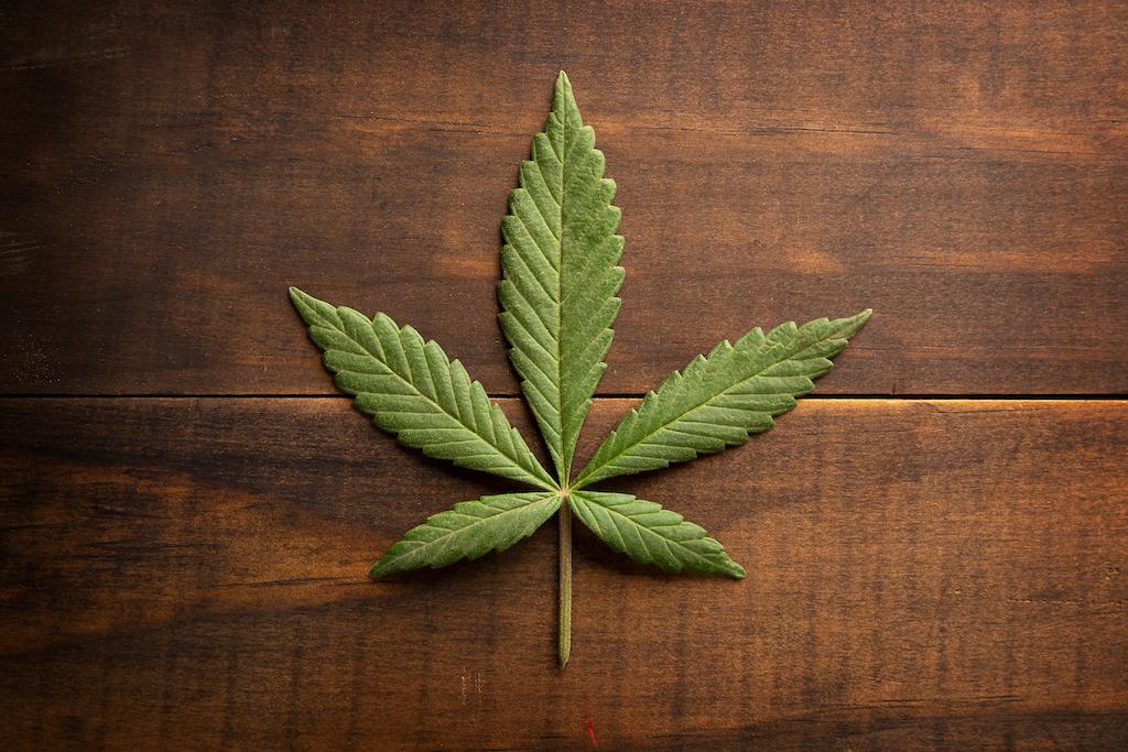 ¡Ojo! La mariguana podría estar relacionada con la esquizofrenia