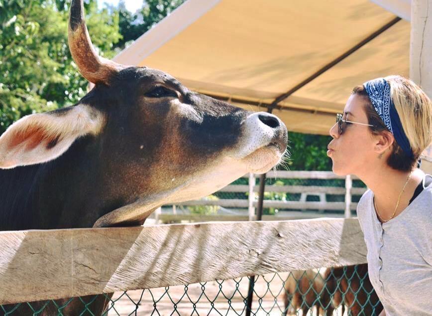 Opinión: Pensar colectivamente es reconocer los derechos de los animales