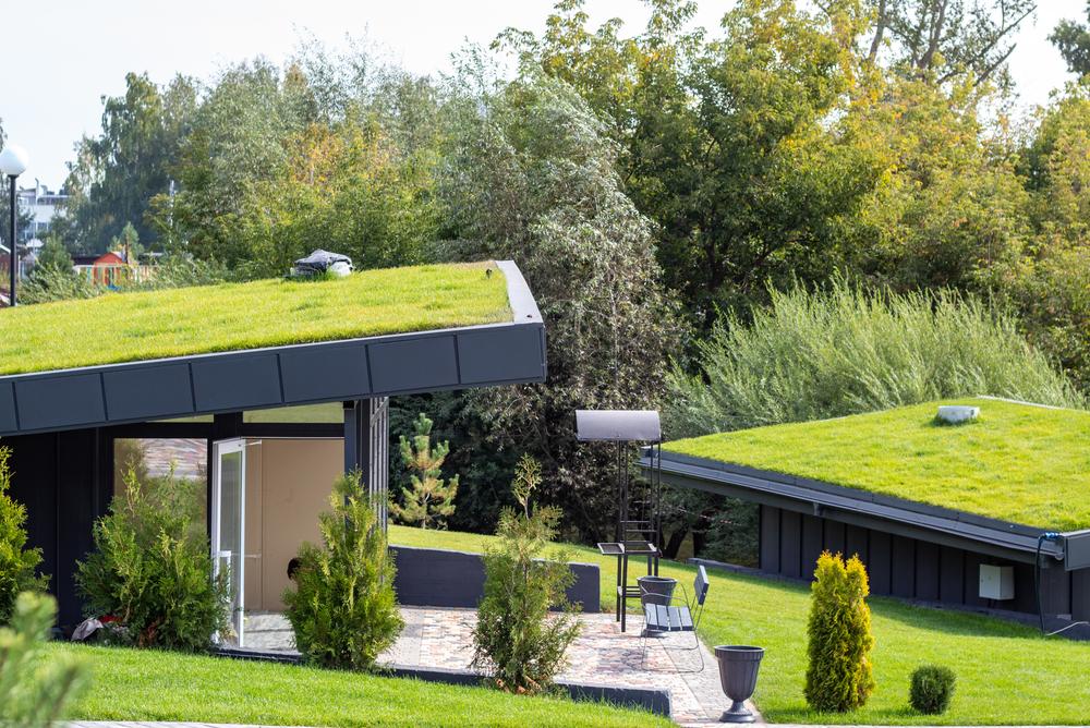 Mexicanos crean techos ecológicos que refrescan los hogares más de 15º