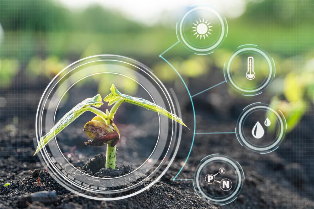 Científicos logran controlar a distancia funciones de las plantas, ¡esta es la razón!