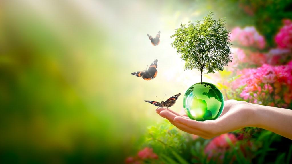Opinión: World Environment Center, a favor del planeta desde 1974